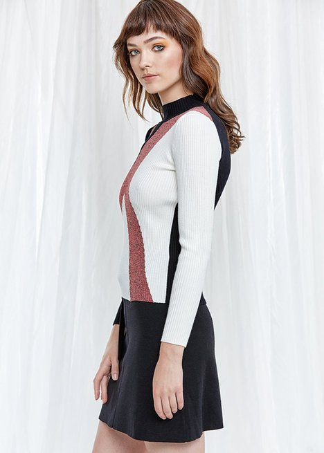 Long Sleeve Turtle Neck Knit Top
